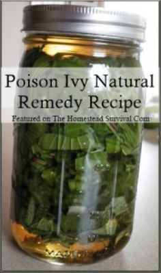 Poison Ivy Natural Remedy Recipe Frugal Homesteading - The Homestead Survival .Com