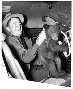 The Bear Facts about Smokey