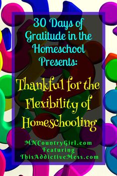 Life has crazy ups and downs and we have to be flexible. Find out why Ali from This Addictive Mess is thankful for the flexibility of homeschooling. Homeschool Curriculum Reviews, How To Start Homeschooling, Ups And Downs, Home Schooling, Learning Resources, Social Skills, Flexibility, Encouragement, Thankful