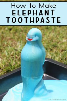 Science Fair Projects, Science Experiments, Fun Diy Crafts, Kid Crafts, Camping Activities, Craft Activities, Elephant Toothpaste Experiment, Educational Crafts, Little Learners