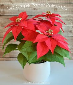 DIY Crepe Paper Poinsettia. Great photo tutorial! Just  Beautiful!