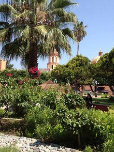Descubre los colores de Tolimán Valle Sagrado otomí y chichimeca: Turismo cultural, turismo religioso, ecoturismo, campamentos y buena vida! Tolimán tiene que ofrecer mucho más de lo que has soñado. Visita Tolimán, Querétaro en México. Tolimán Patrimonio Inmaterial de la Humanidad Unesco.