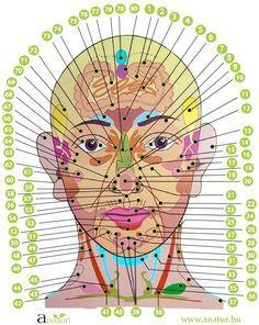 Reiki, Face Health, Feng Shui, Massage, Health Fitness, Healing, Zumba, Wisdom, Sport