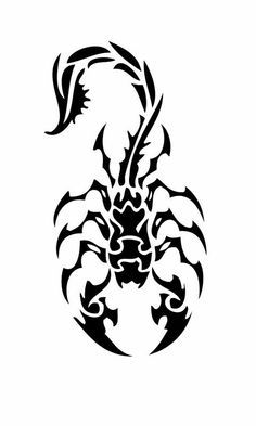 To See More Scorpion Tattoos Designs Amp Pictures Visit Tattooshowtime Tribal Tattoos, Tribal Drawings, Tribal Art, Tattoo Drawings, Body Art Tattoos, Cool Tattoos, Tatoos, Tribal Tattoo Designs, Escorpion Tattoo