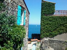 Collioure, Pyrénées-Orientales