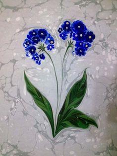ebruda çiçek çeşitleri