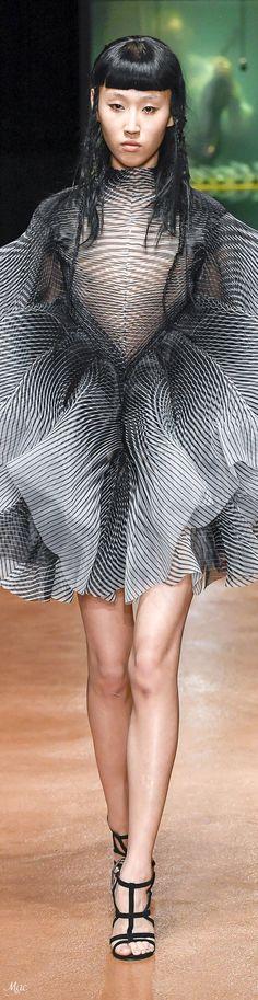 Fall 2017 Haute Couture Iris van Herpen