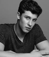 Image result for shawn mendes hot