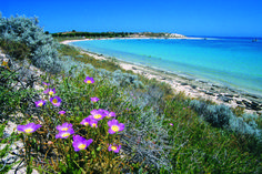 Coral Bay - Australie occidentale