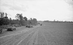 Sherman tanks of 11th Armoured Division advance alongside a wood, 26 June 1944. The tapes indicate the lane is free of mines
