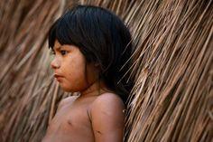 Nativo da Amazonas