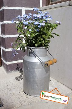 Planting things is just fun! What else can you do with an old, battered milk jug? Before you get dus Most Beautiful Gardens, Forget Me Not, Milk Churn, Milk Jug, Outdoor Projects, Outdoor Gardens, Planter Pots, Canning, Antiques
