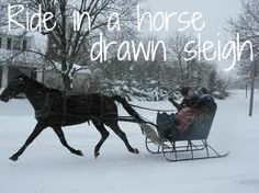 Ride in a horse drawn sleigh