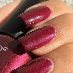 Elite99 Gel Polish Color Coat 40515