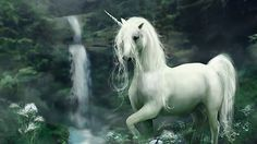 Full HD 1080p Unicorn Wallpapers HD, Desktop Backgrounds 1920x1080 ...