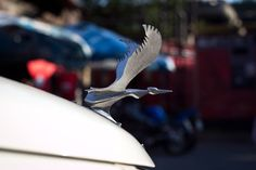 Stork hood ornament
