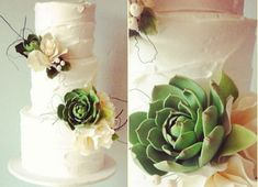 Suculant tutorials! botanical wedding cake with succulents by Yummy Cupcakes and Cakes