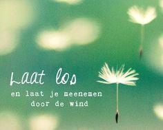 Laat los en laat je meenemen door de wind