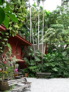 Epipremnum aureum, Vanda orchids, tillandsia, Licuala, diffenbachia, Tall clumping palm and rhapis. Jim Thompson House, Bangkok.