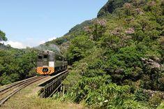 micenasturismo.com.br Passeio de Trem Serra do Mar