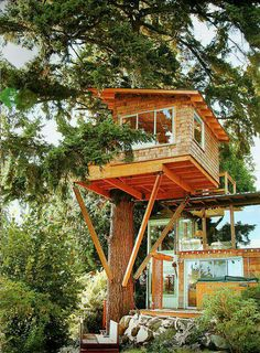 Tree house on a grand scale.