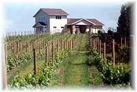 Karma Vista Winery, Coloma MI