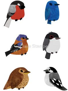 Beautifully Designed Bird Breed Sticker Set by Claire Stamper