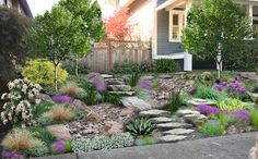 Locate much more info regarding Hillside Landscaping Ideas Sloped Front Yard, Front Yard Patio, Small Front Yard Landscaping, Hillside Landscaping, Front Yard Design, Front Yards, Landscaping Ideas, Terraced Backyard, Rain Garden Design