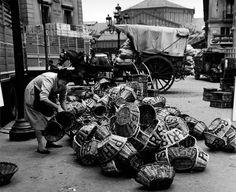 Eugeni Forcano - La meva Barcelona | Galeria Vintage Photography, Street Photography, Old Photos, Vintage Photos, Barcelona City, Abstract Nature, Great Photographers, Black And White Photography, Ibiza