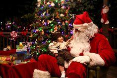 Ho Ho Ho! Merry Christmas!  日本のみなさん、メリークリスマス!