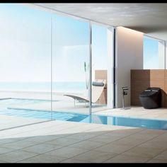 Indoor/outdoor pool from master bathroom