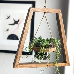 Trapezoid - Wood Hanging Modern Mid Century Planter Easy Diy Projects, Wood Projects, Diy Wall Decor, Diy Home Decor, Decorative Wall Hooks, Diy Plant Stand, Plant Shelves, Diy Planters, Hanging Plants