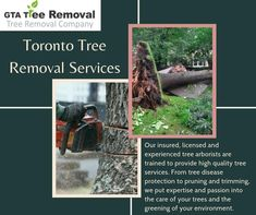 Essentially, we focus on tree removal, trimming and pruning, and stump removal services in Toronto. Read on to learn more: Call at now. Tree Removal Service, Stump Removal, Removal Services, Gta, Toronto, Environment, How To Remove, Reading, Word Reading