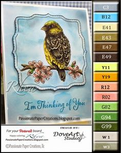 Passionate Paper Creations: Color Palettes  Dove Art...Bird On A Branch