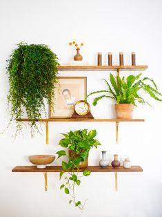 shelves - wall
