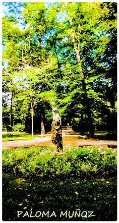 Aranjuez, Comunidad de Madrid, jardines del Príncipe, verano Aranjuez, Community of Madrid, Prince's gardens, summer