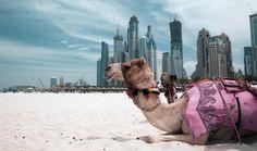 Luxury in Dubai ... hotels in Dubai marina #Dubai http://holipal.com/hotels/