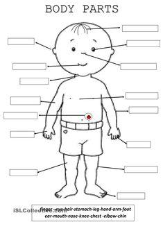body parts worksheets grade kindergarten 1st worksheet printable human activity activities islcollective fun esl vocabulary super