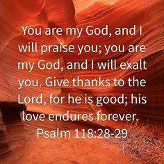 Psalm 118: 28-29