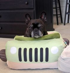 The Martha Blog - My frenchies, Francesca and Sharkey, and their new #MarthaStewartPets @petsmartcorp beds!