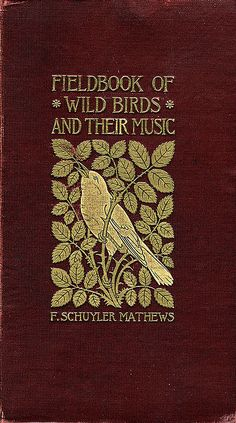 'Field book of wild birds and their music' by F. Schuyler Matthews; New Tork, 1907