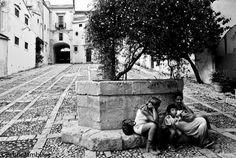 435  Cortile di Palazzo Nicolaci, via Nicolaci, Noto, Siracusa, Sicilia (foto di Bruno Lambiase)