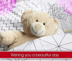 Good Morning image with flowers, Beautiful good morning wishes, good morning flowers image Beautiful Good Morning Wishes, Lovely Good Morning Images, Latest Good Morning, Good Morning Images Download, Good Morning Post, Good Morning Picture, Good Morning Flowers, Morning Pictures, Inspirational Good Morning Messages