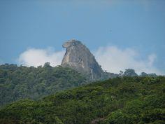 Ilha Grande - Pico do Papagaio