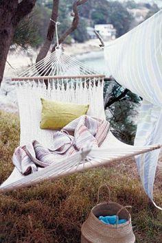 hammock by pine tree sea