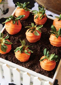 "Chocolate covered strawberry ""carrots"" -- would be cute to make a cake and use these as toppers with the ""dirt"" crumbs"