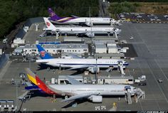 Airliners.net - Three different models of the 777 family are present in this row at Everett