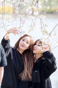 SinB and Eunha Gfriend Gfriend Profile, Sinb Gfriend, Korean Entertainment, Popular Music, Kpop Groups, Girl Group, Twitter Update, Photoshoot Ideas, Couples