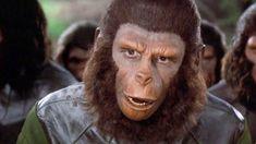 Caesar (Roddy McDowall) - Battle for the Planet of the Apes Dawn Of The Planet, Planet Of The Apes, Linda Harrison, Transformers 5, Den Of Geek, Last Knights, Sci Fi Horror, Internet Movies, Planets
