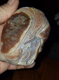Crystals Minerals, Crystals And Gemstones, Lake Superior Agates, Rock Collection, Fossils, Metals, Minnesota, Shells, Rocks